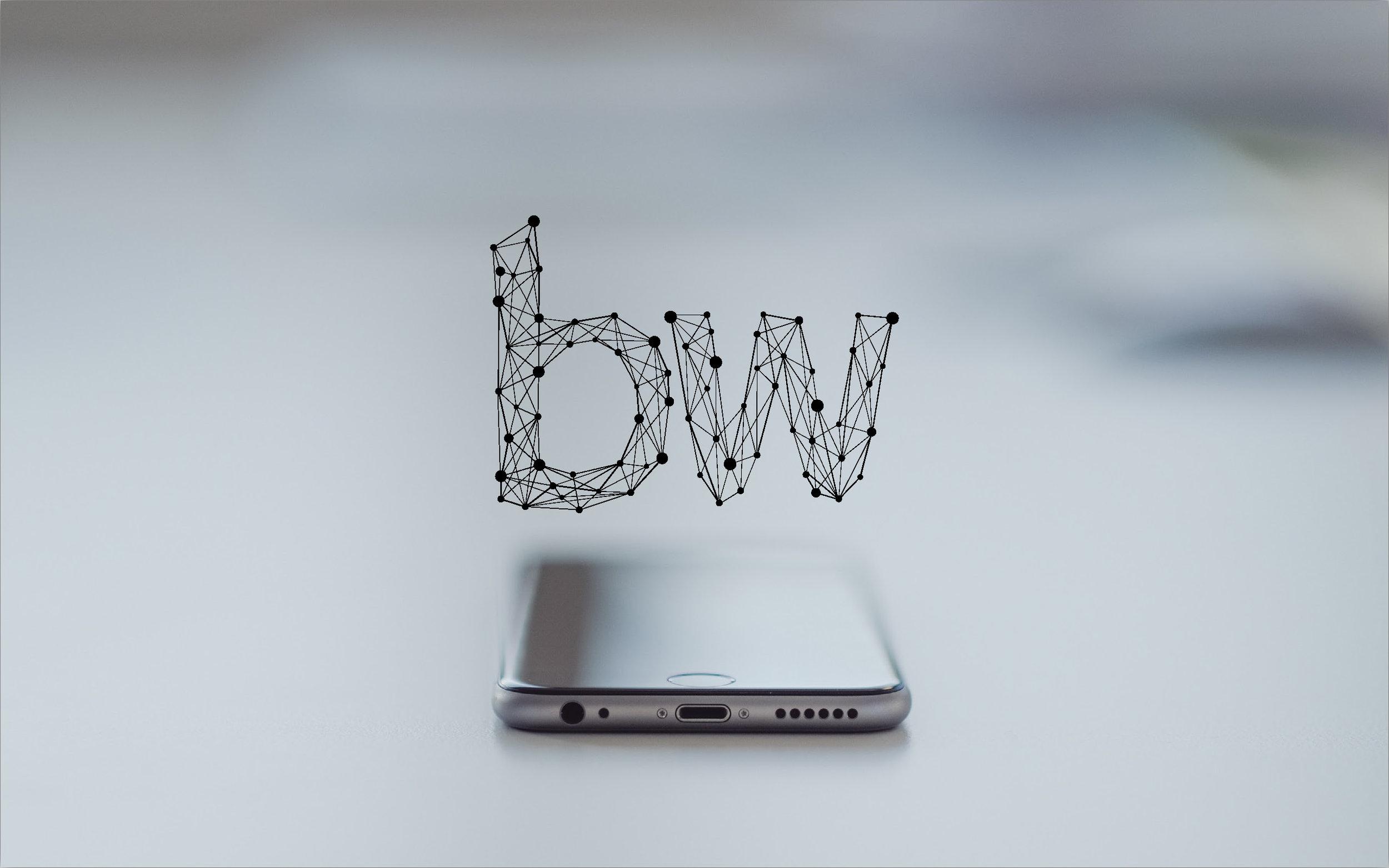 brightwild_brand_guideline_v1_Page_6.jpg
