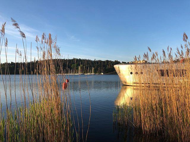 Beautiful morning at Bockholmen Marina, the mooring spot of the marine cabin in Stockholm. #stayinthemarinecabin #weekendgetaway #holidayhome #boatforrent #visitstockholm #visitsweden #midsommar #stockholm #midsummer