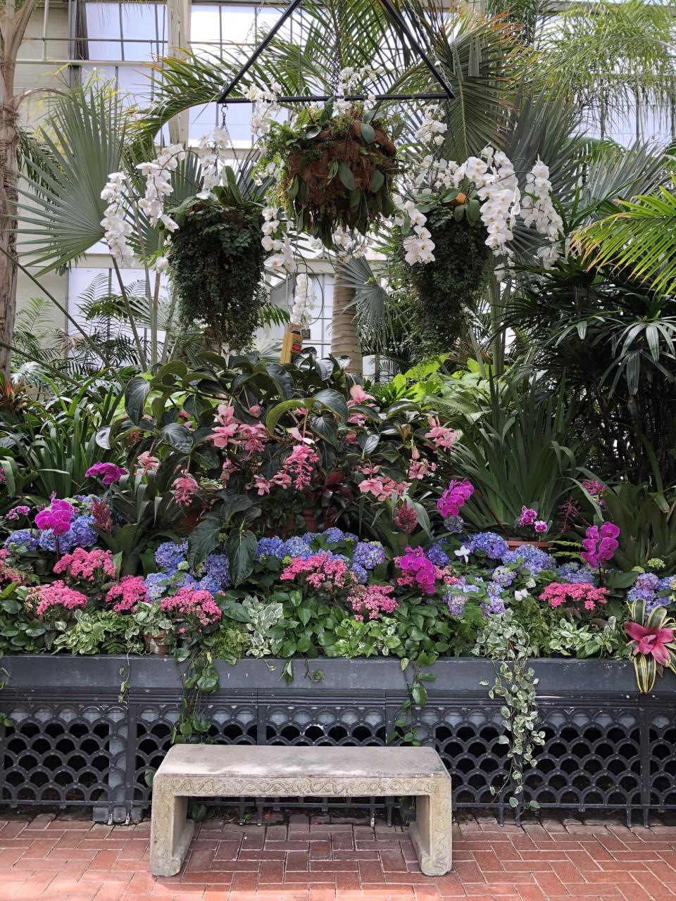 Blitmore_indoor_garden.jpg