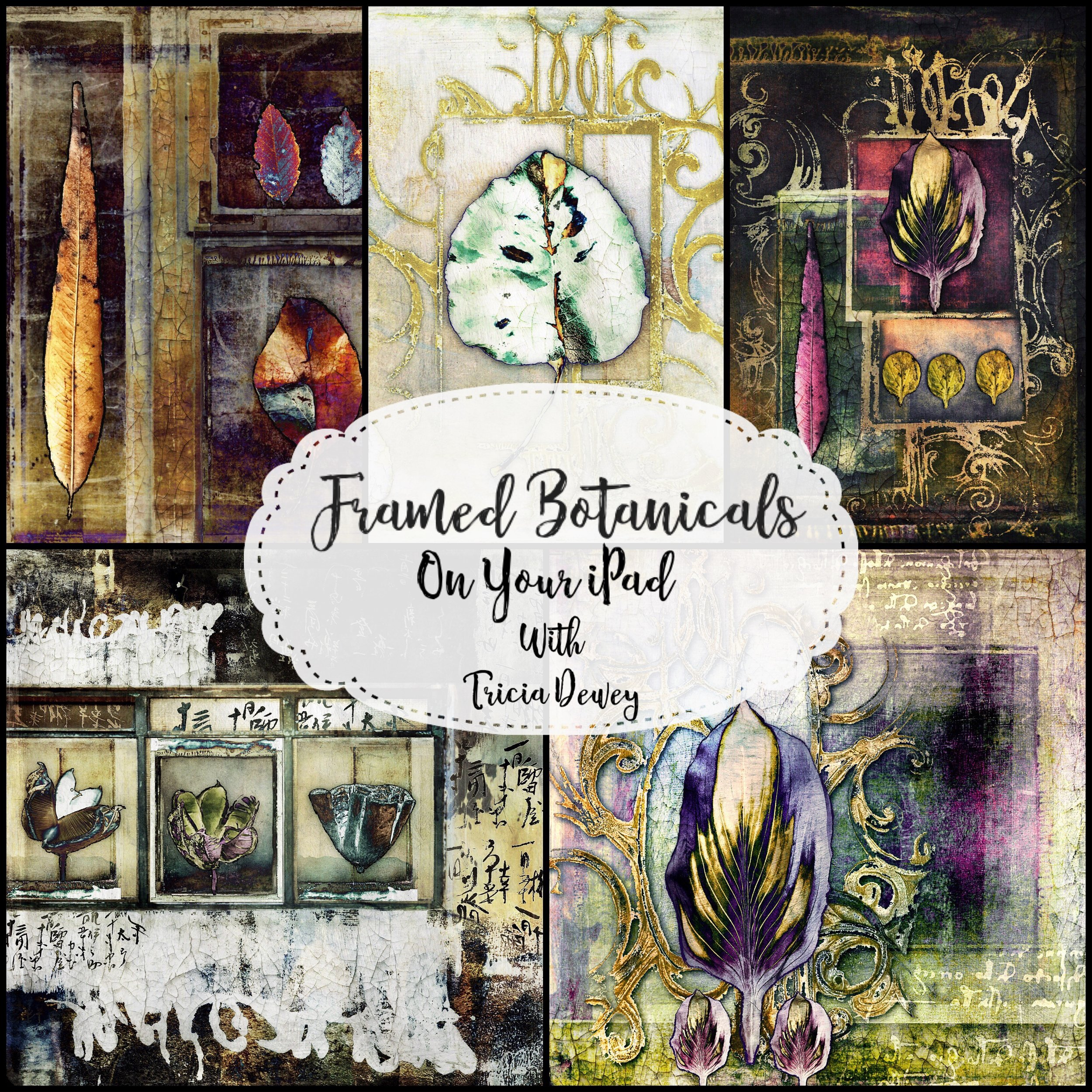 Framed Botanicals - Create your own Frames & Botanical Pieces on the iPadby Tricia Dewey