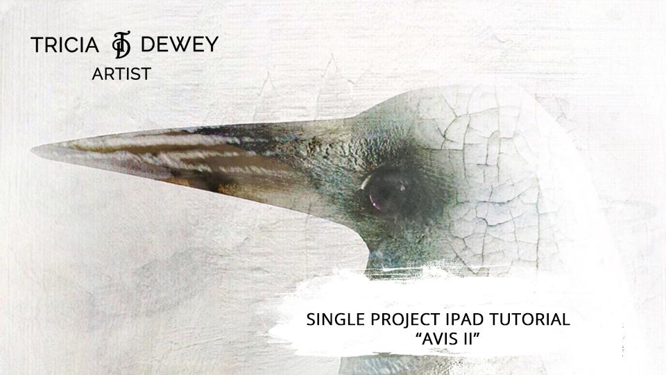 Avis II