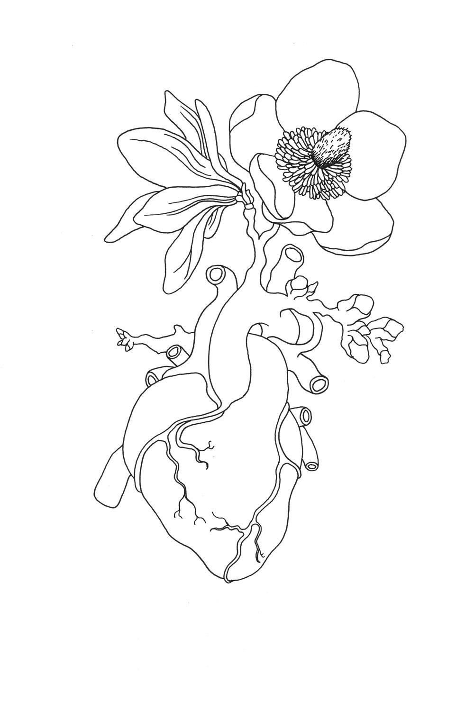 Heart Magnolia