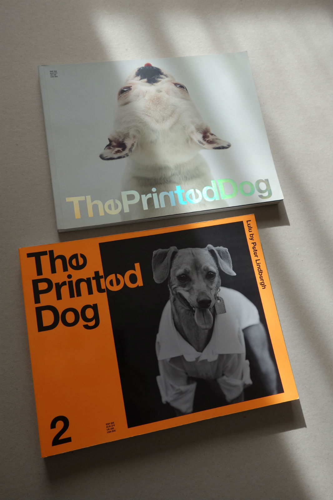 THE PRINTED DOG.jpg