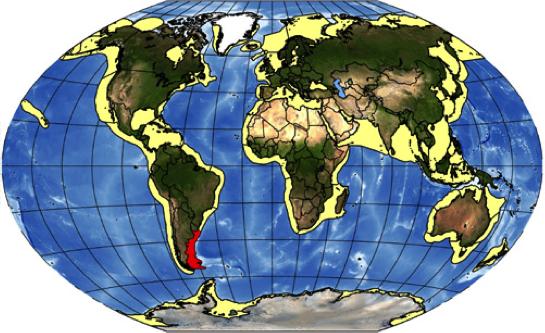 GlobePatagShelf.png