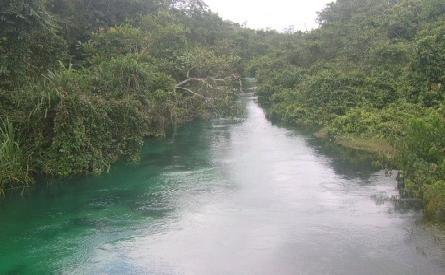 Ethiope river blog pic.jpg