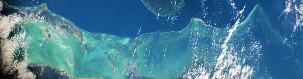 Figure 4 Great Belize Barrier Reef from space. Jeff Williams (NASA).