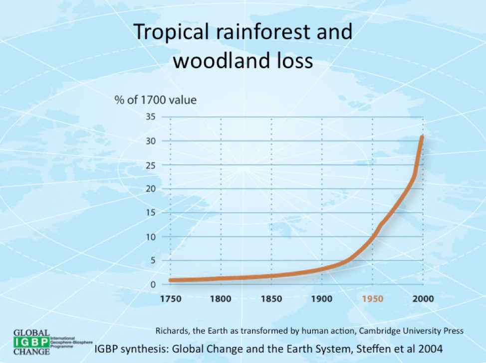 Figure 6 Rainforest loss over time.