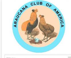 Araucana Club of America