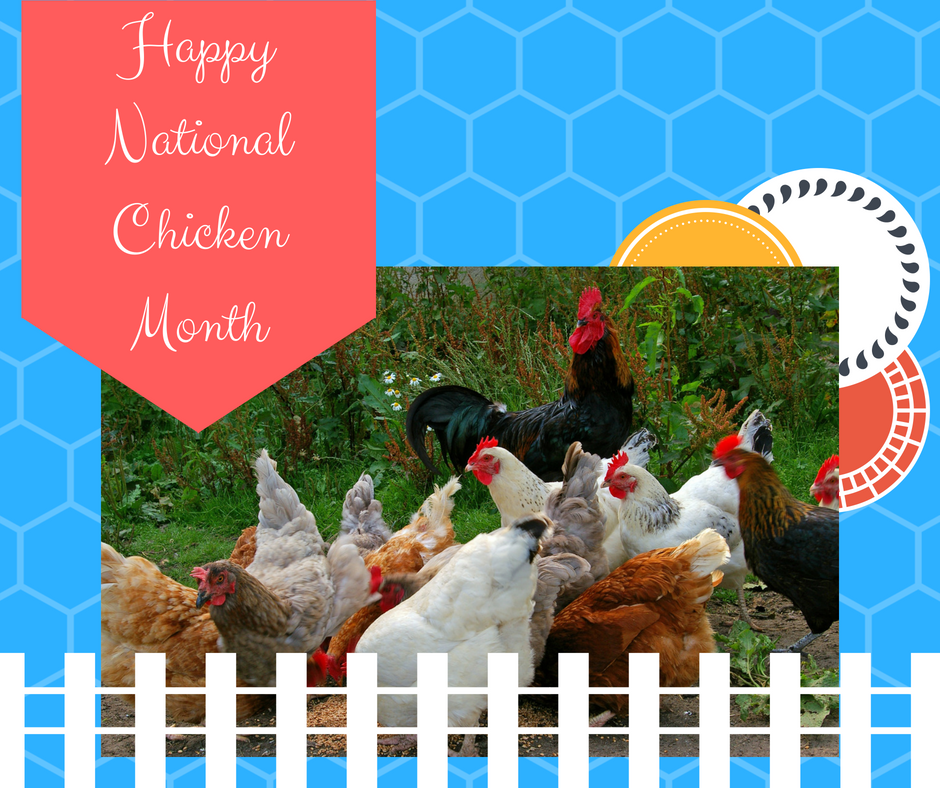 Happy National Chicken Month - September.png