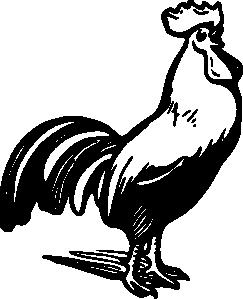 edit(18682).png