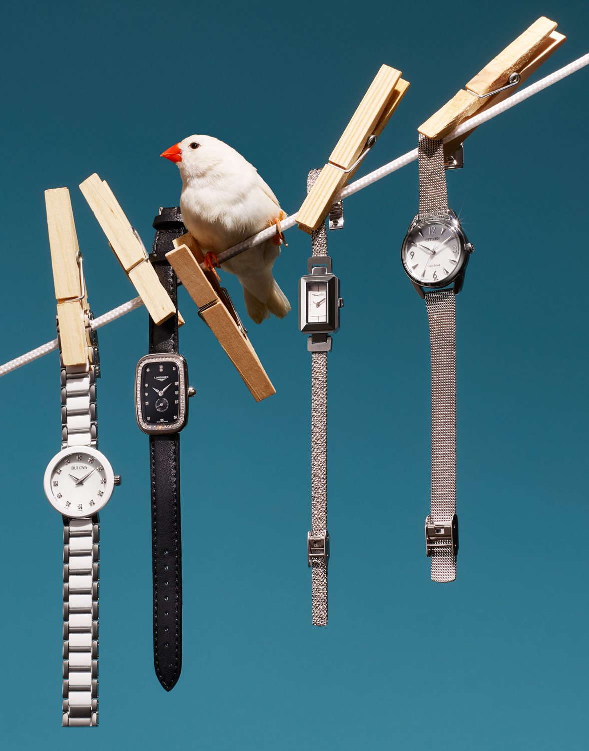 STY_13128_BIRD_1_WATCHES_copy.jpg