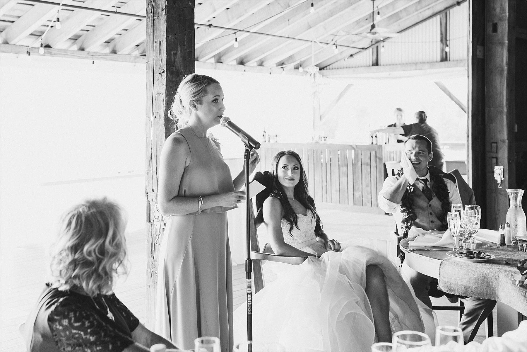 Hidden Vineyard Michigan Wedding_0158.jpg