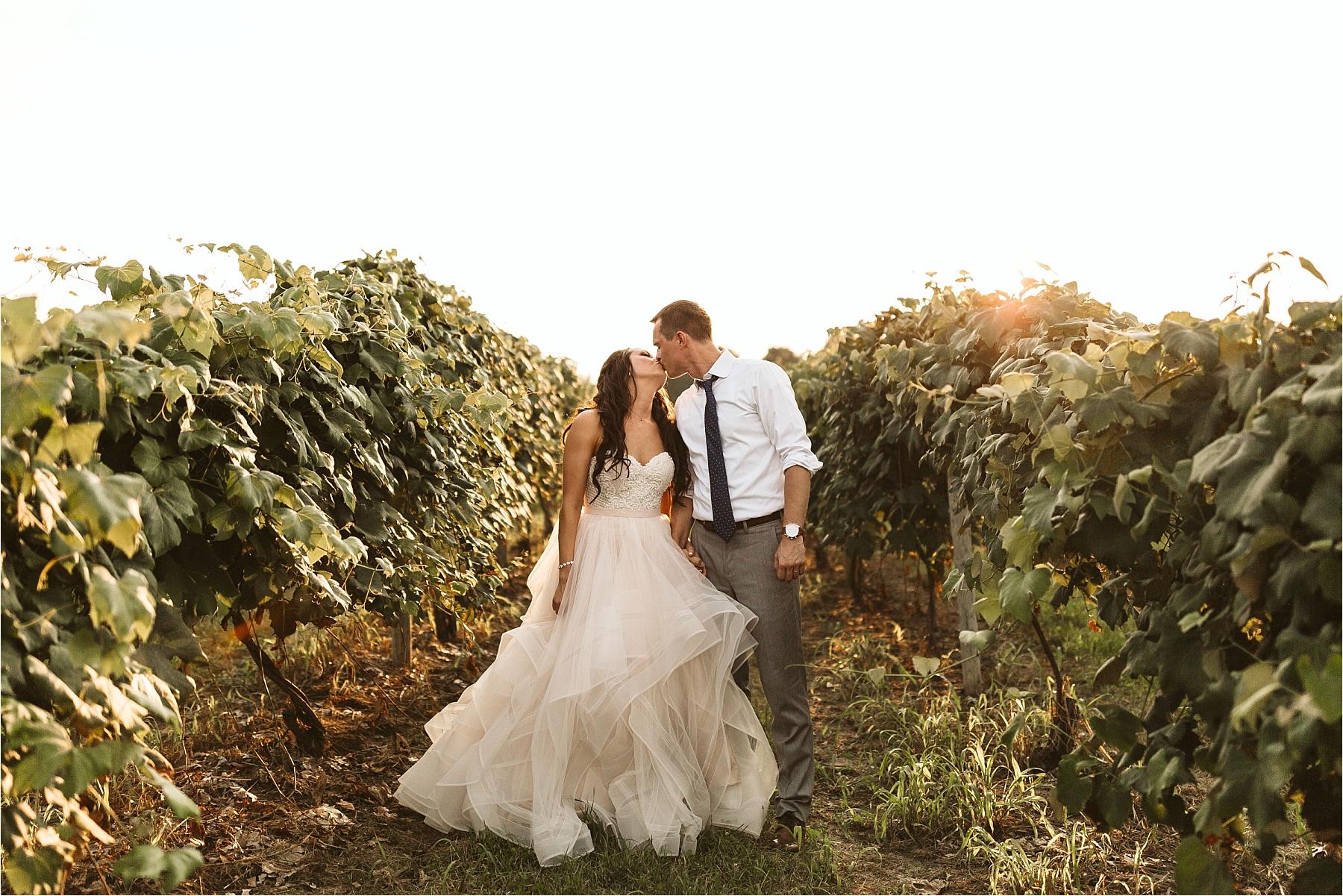 Hidden Vineyard Michigan Wedding_0192.jpg