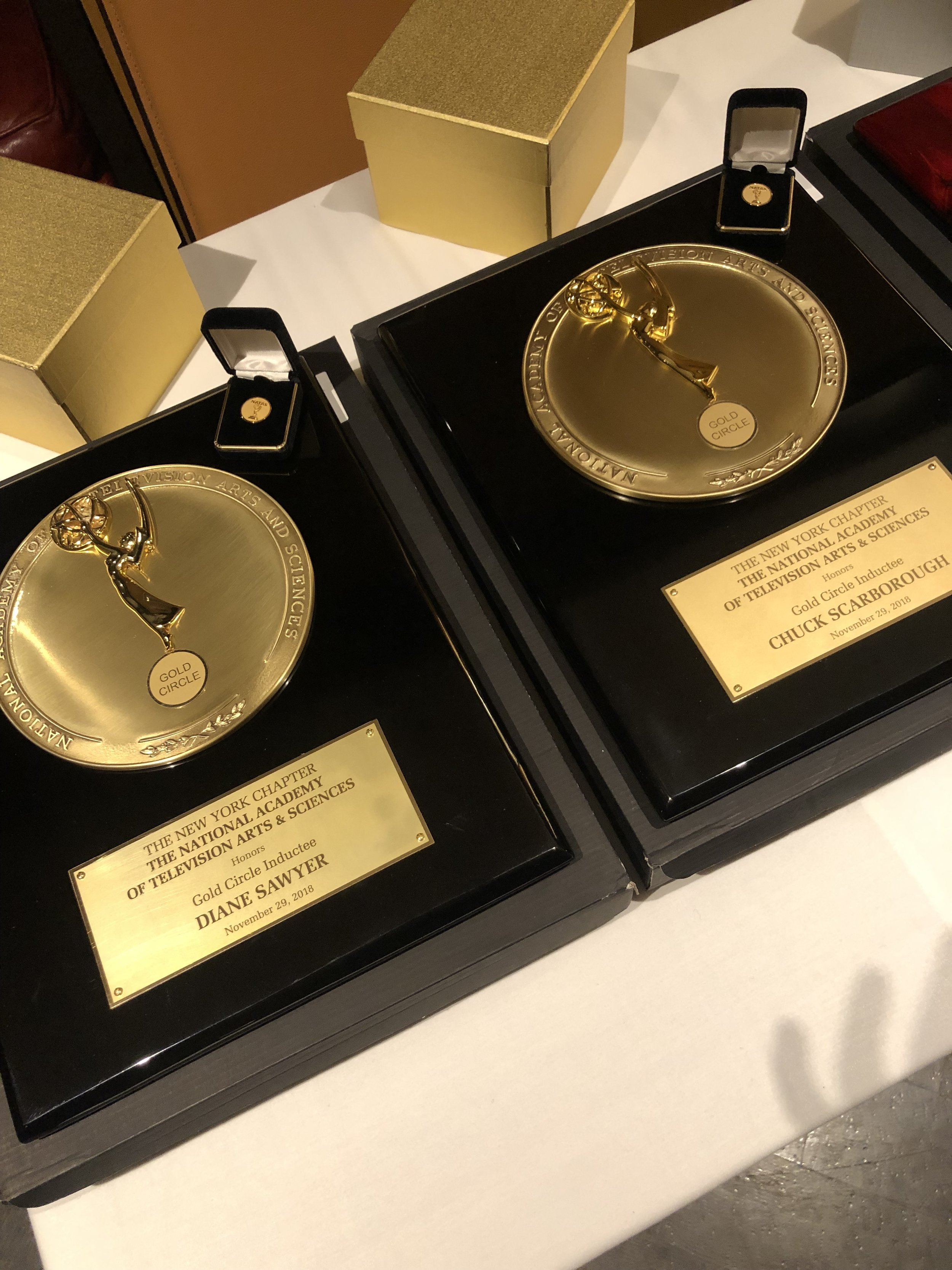 Audiobrain_SIlver And Gold Awards.JPG