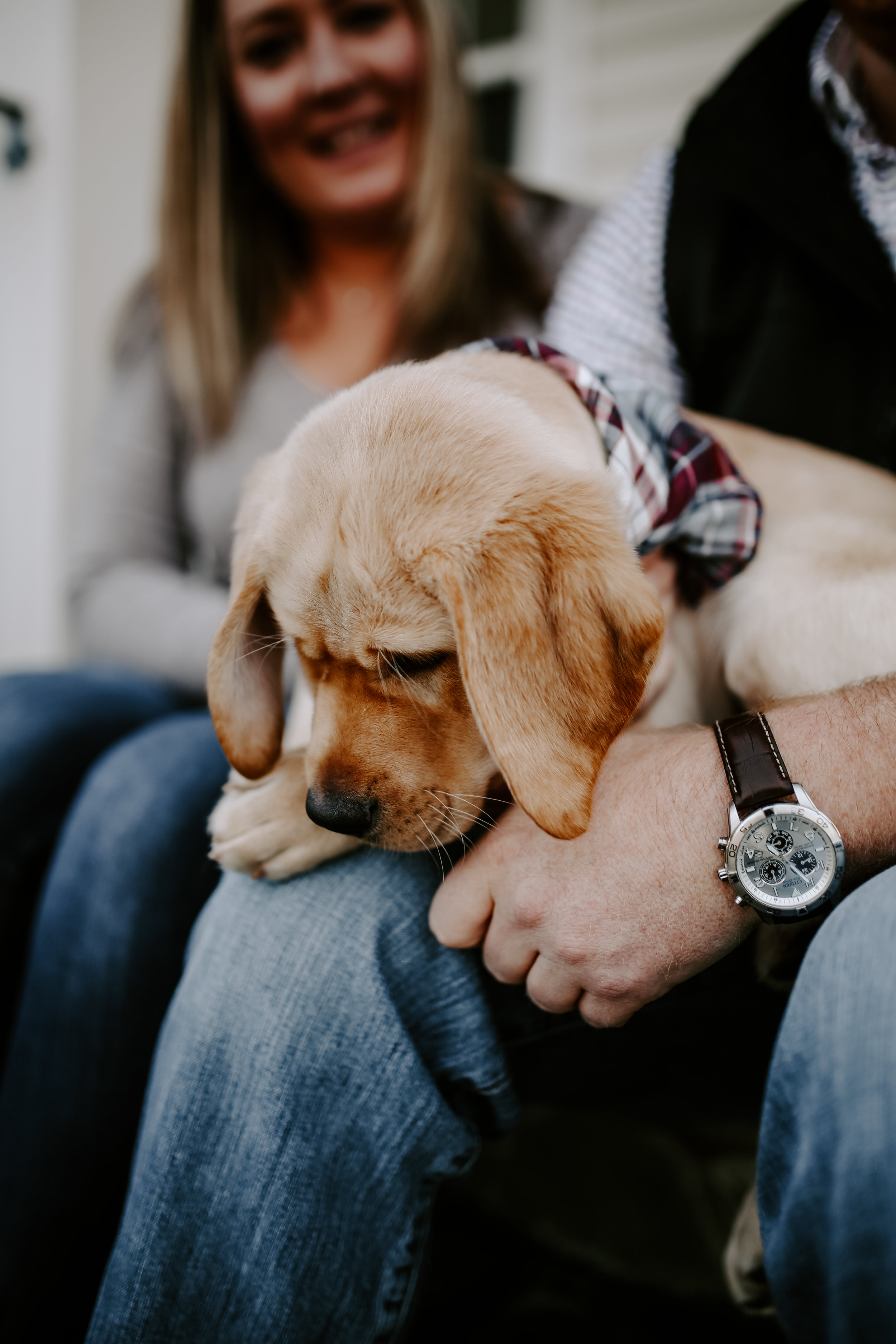 Captain_Puppy_2019-36.jpg