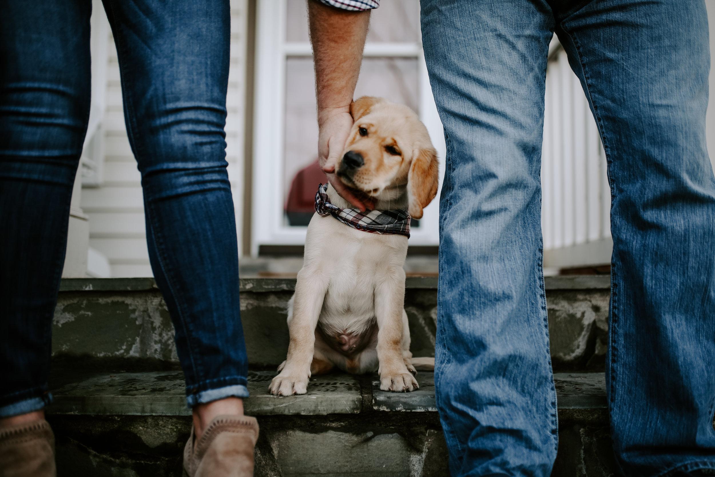 Captain_Puppy_2019-44.jpg