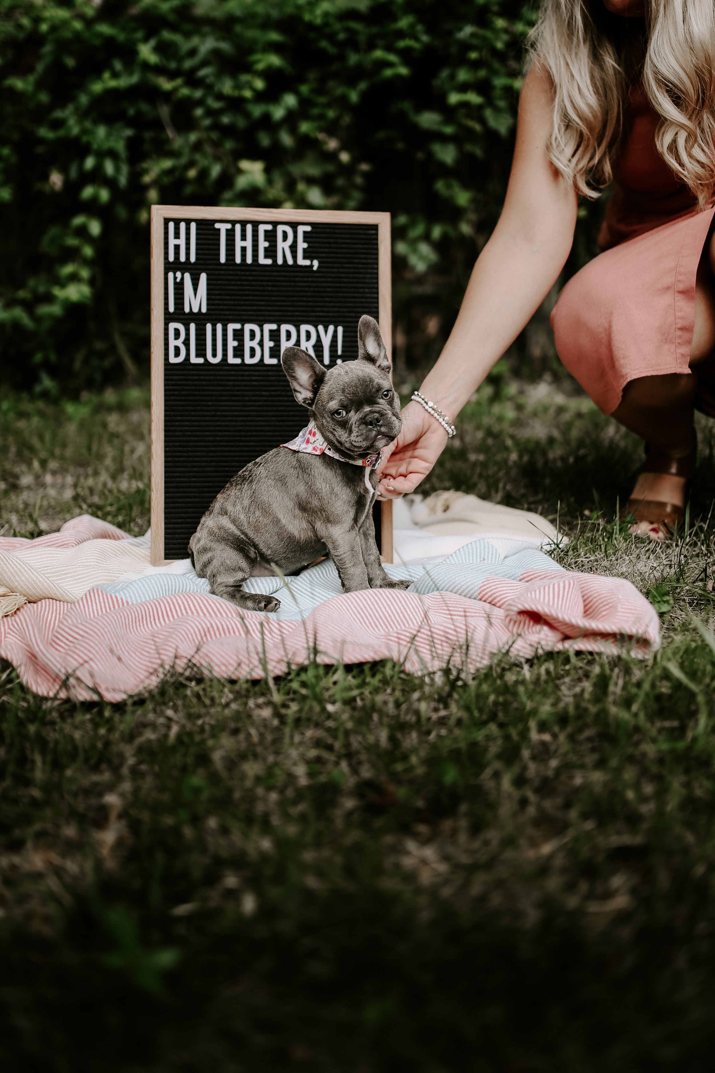 Bluberry|TheFrenchie_2019-5.jpg
