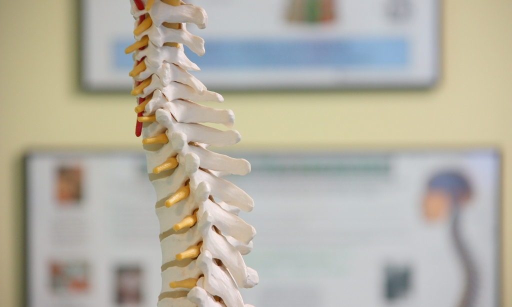 Well Within offers   GENTLE CHIROPRACTIC SERVICES    Learn More