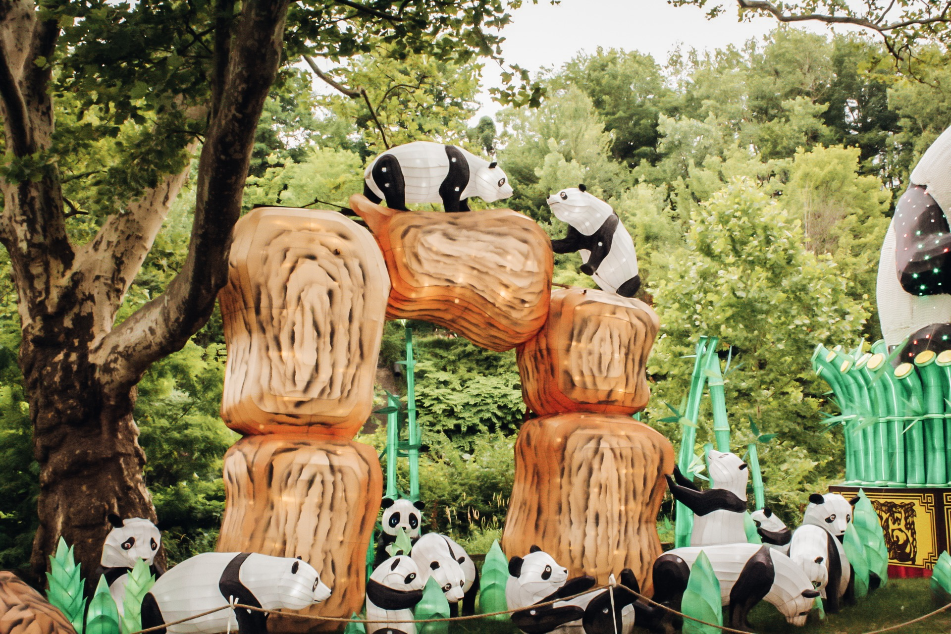 The panda lanterns are so cute!! The kissing panda's on the top are my favorite.