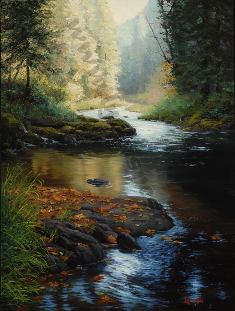 drift creek I_large.jpg
