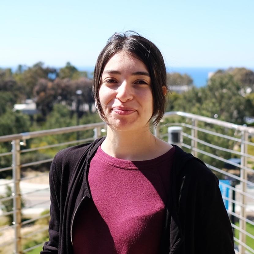 alejandra dominguez lopez  | Research assistant 2019