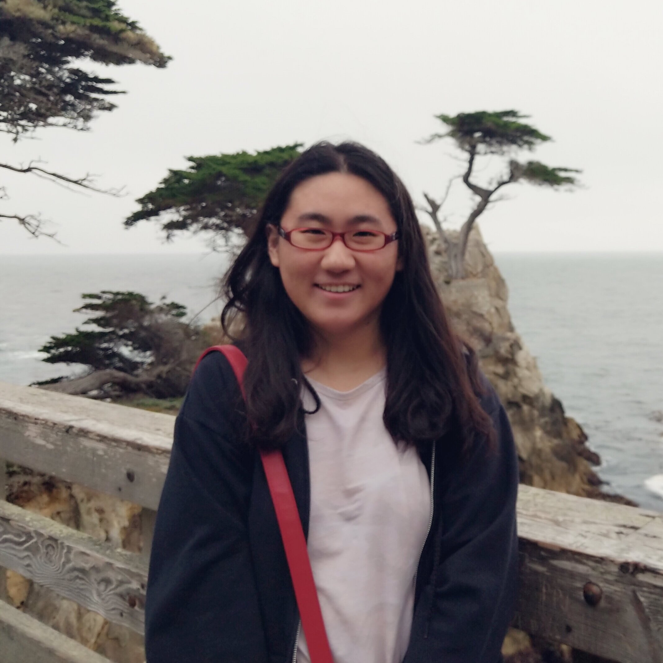 annie li  | Research assistant 2019-