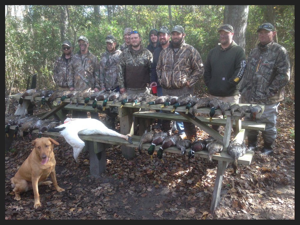 duck-hunts-with-border.jpg