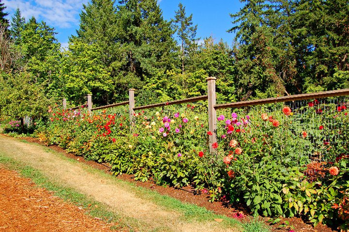 seasonal gardens and organic vegetable garden.