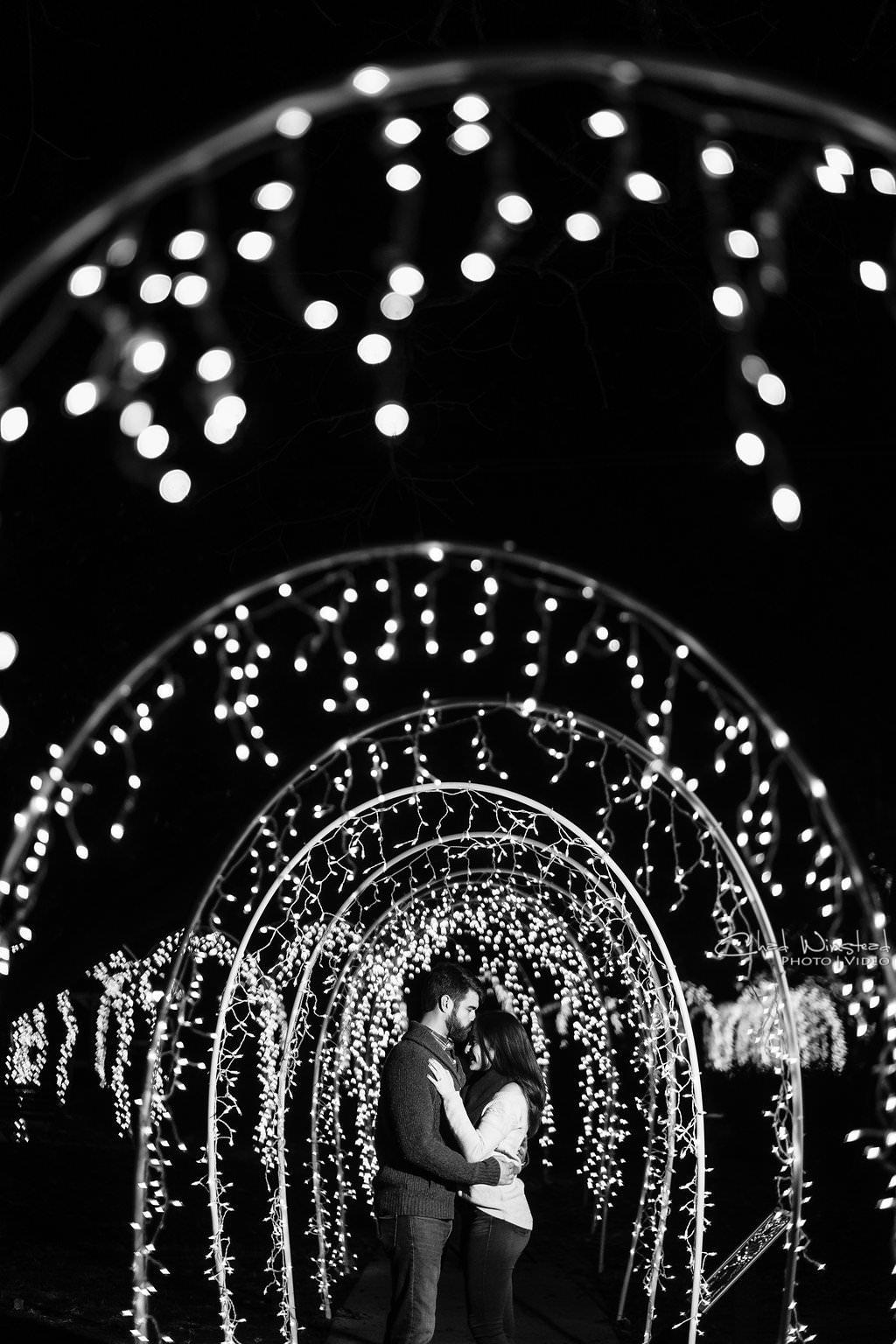 christmas-lights-eastern-nc-wedding-photograph.jpg