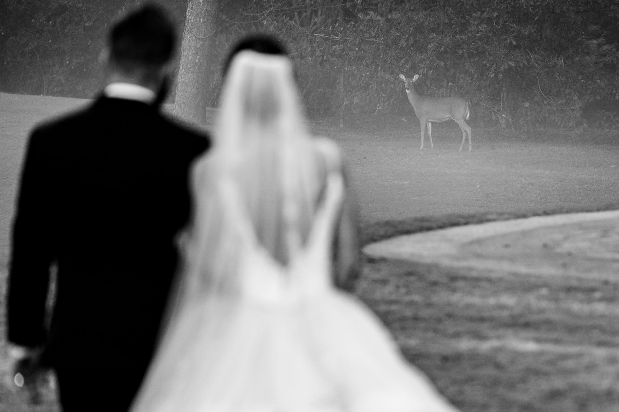 Emily&Ron-Chapel-hill-wedding-barn-72.jpg