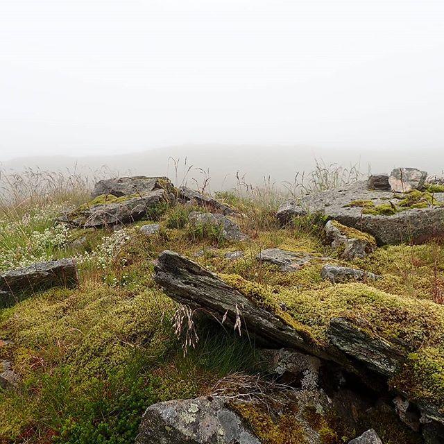 Grey day... #annejensenart #hiking #clouds #greyday #hikingbergen#floyen #nordicinspiration