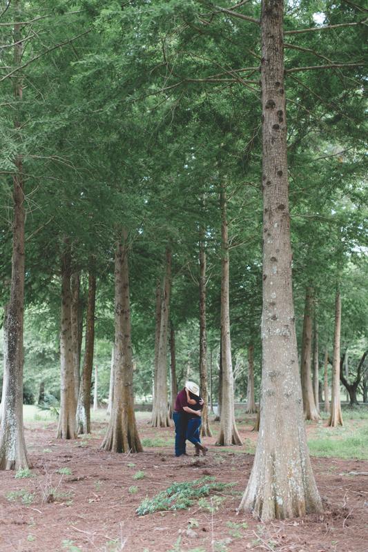 tall pine trees couple kissing lakeland lake parker park engagement photos lakeland wedding photographer