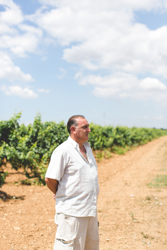 Schiena Vini Italian Vineyards - farmer