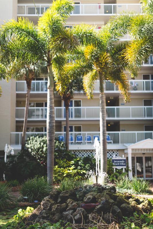 Palm trees in front of resort - Tradewinds Island Grand Resort beach wedding - st pete beach - Jaime DiOrio Photography - Destination Orlando wedding photographer -  palm tree detail around resort.JPG