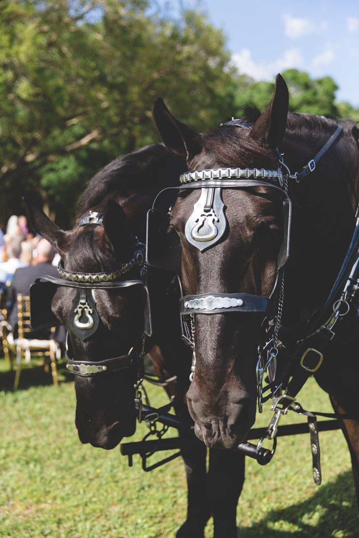 jaime diorio destination orlando wedding photographer outdoor barn wedding privately owned ranch photos (609).jpg