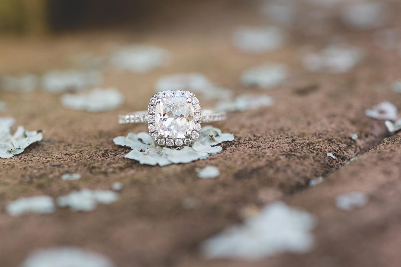 Destination Orlando Wedding Photographer - Disney Wedding Photographer - West Palm Beach Engagement Session - Jaime DiOrio (26).jpg