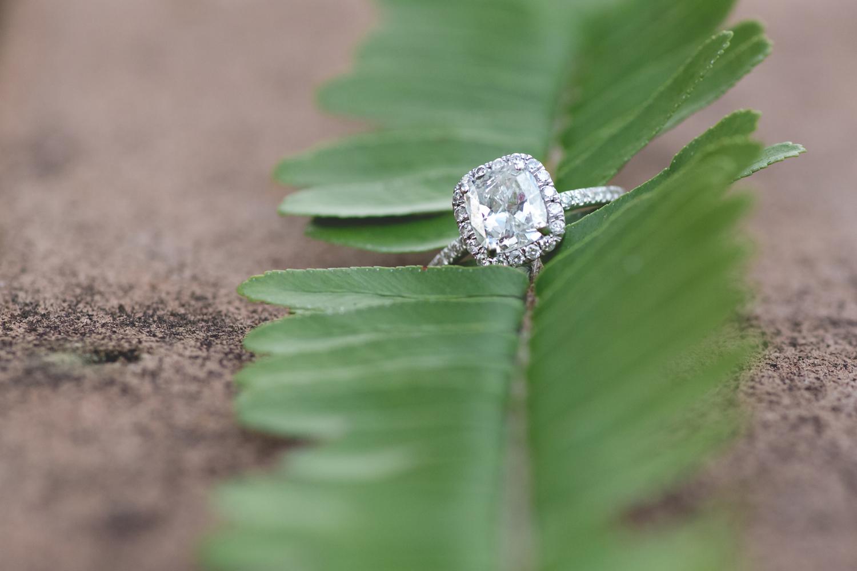 Destination Orlando Wedding Photographer - Disney Wedding Photographer - West Palm Beach Engagement Session - Jaime DiOrio (28).jpg