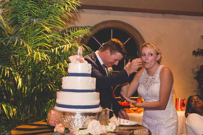 Bride drops cake on Groom at wedding reception