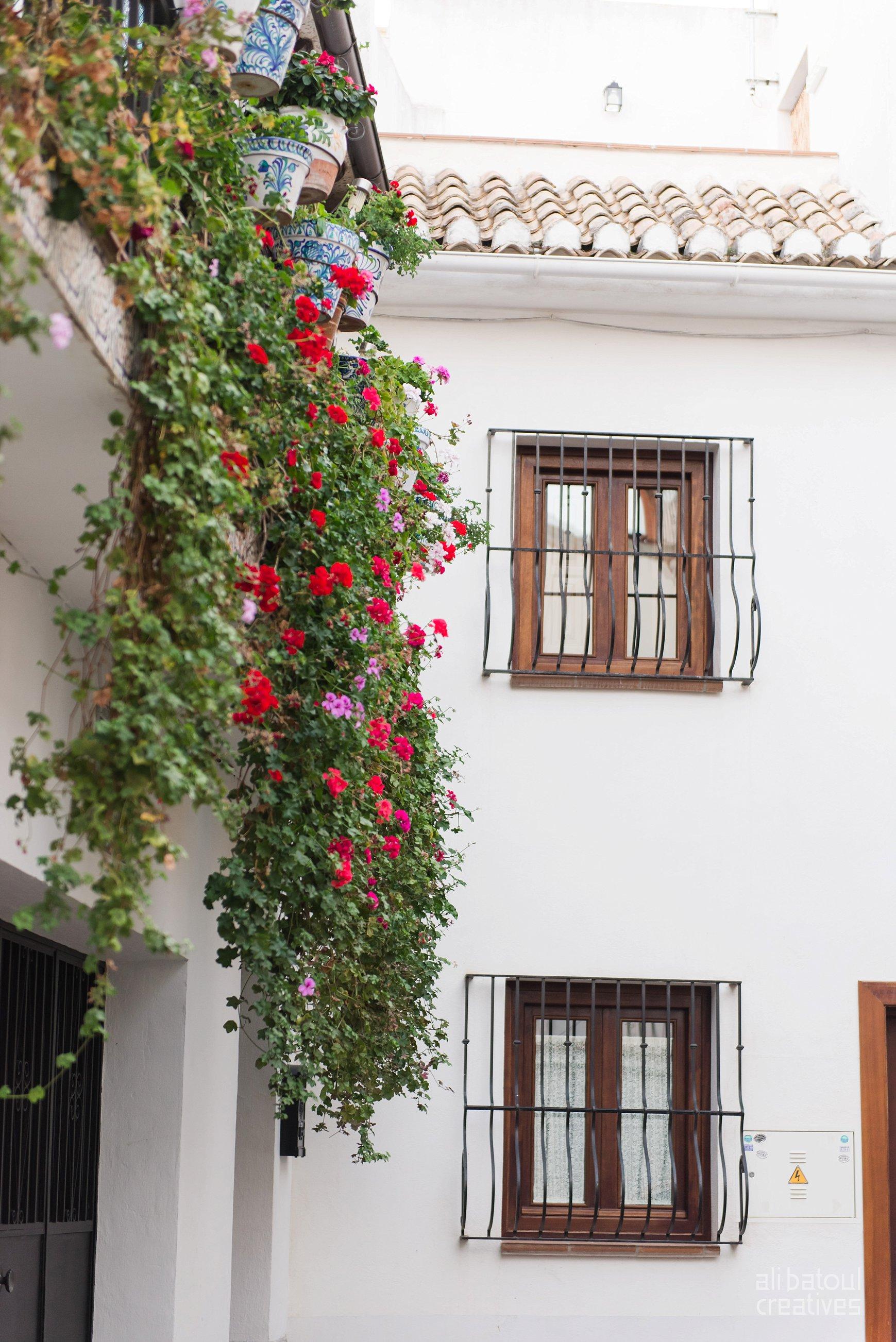 Granada (Part II) - Ali Batoul Creatives-43_Stomped.jpg