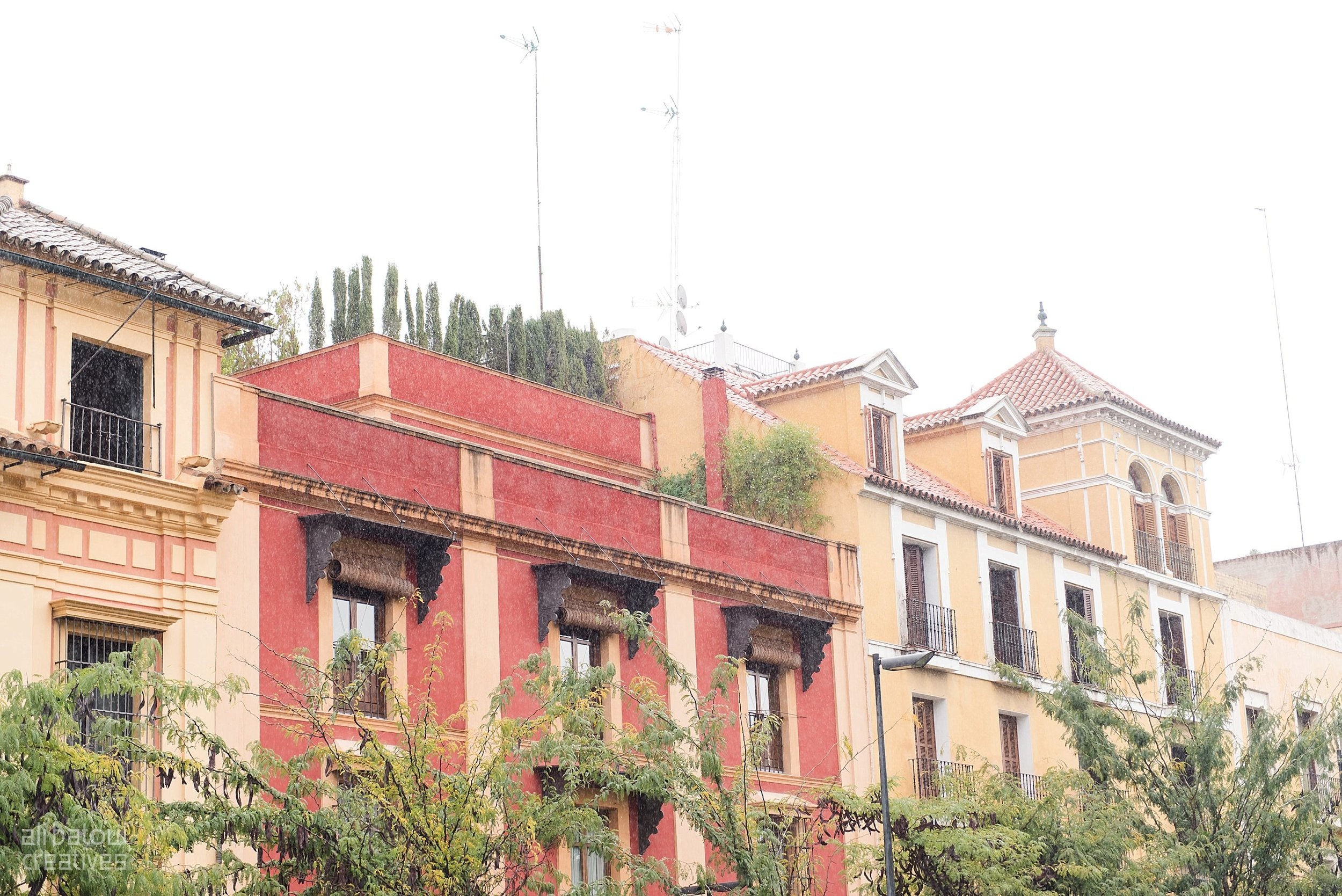 Seville - Ali Batoul Creatives-3_Stomped.jpg