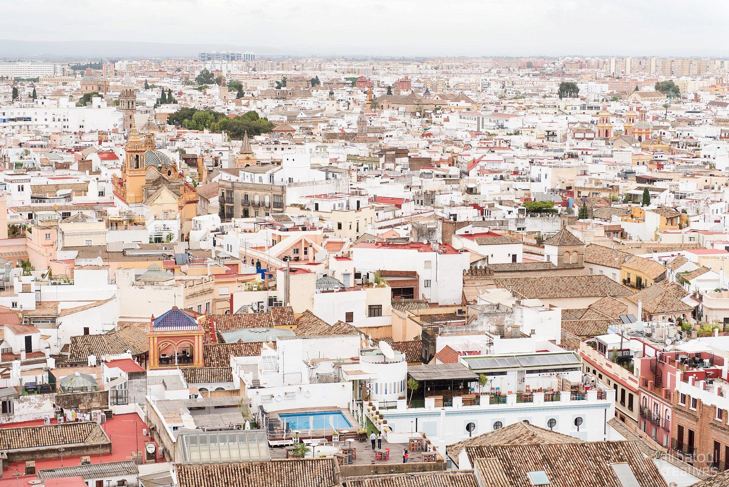 Seville - Ali Batoul Creatives-28_Stomped.jpg