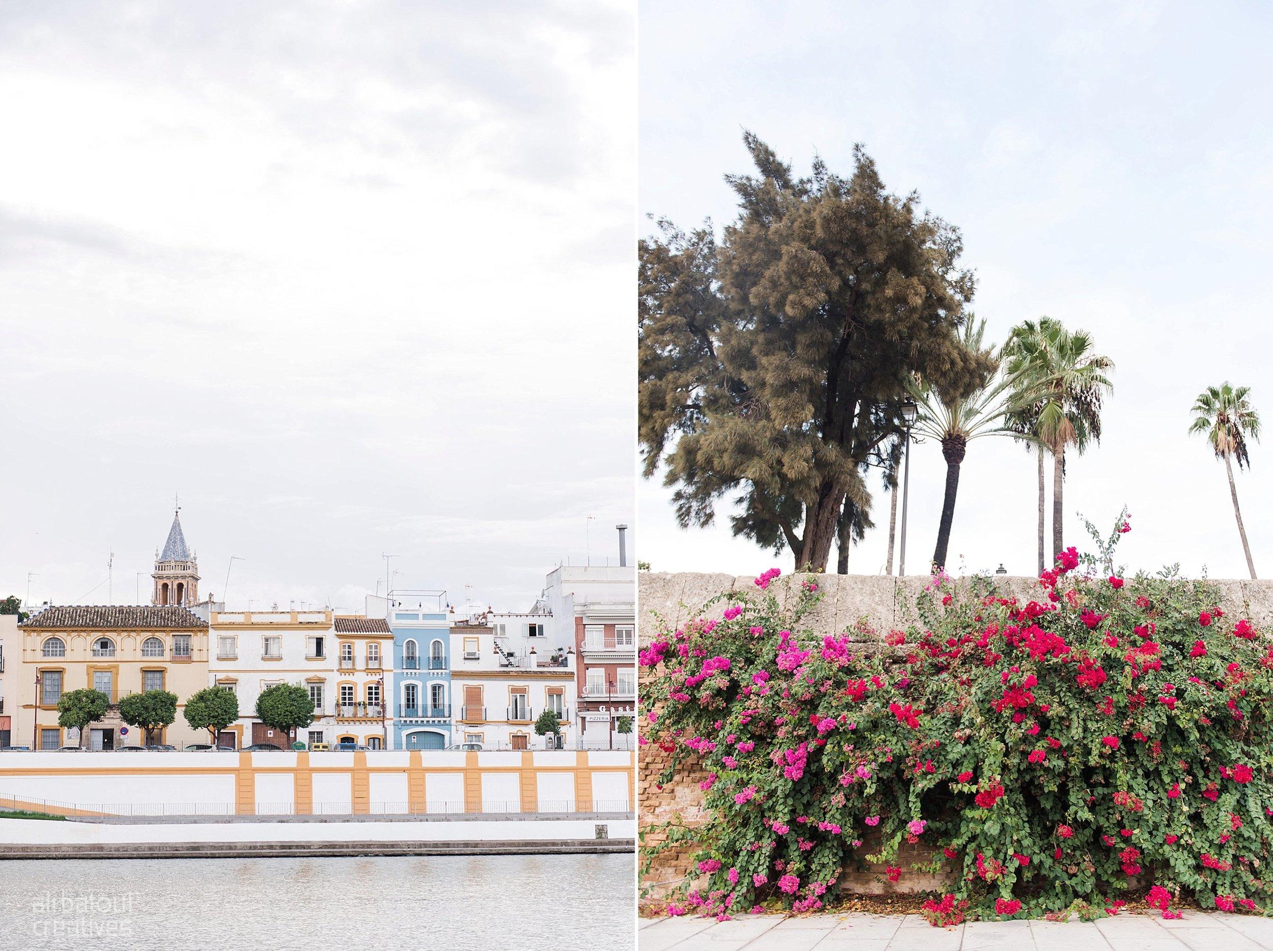 Seville - Ali Batoul Creatives-58_Stomped.jpg