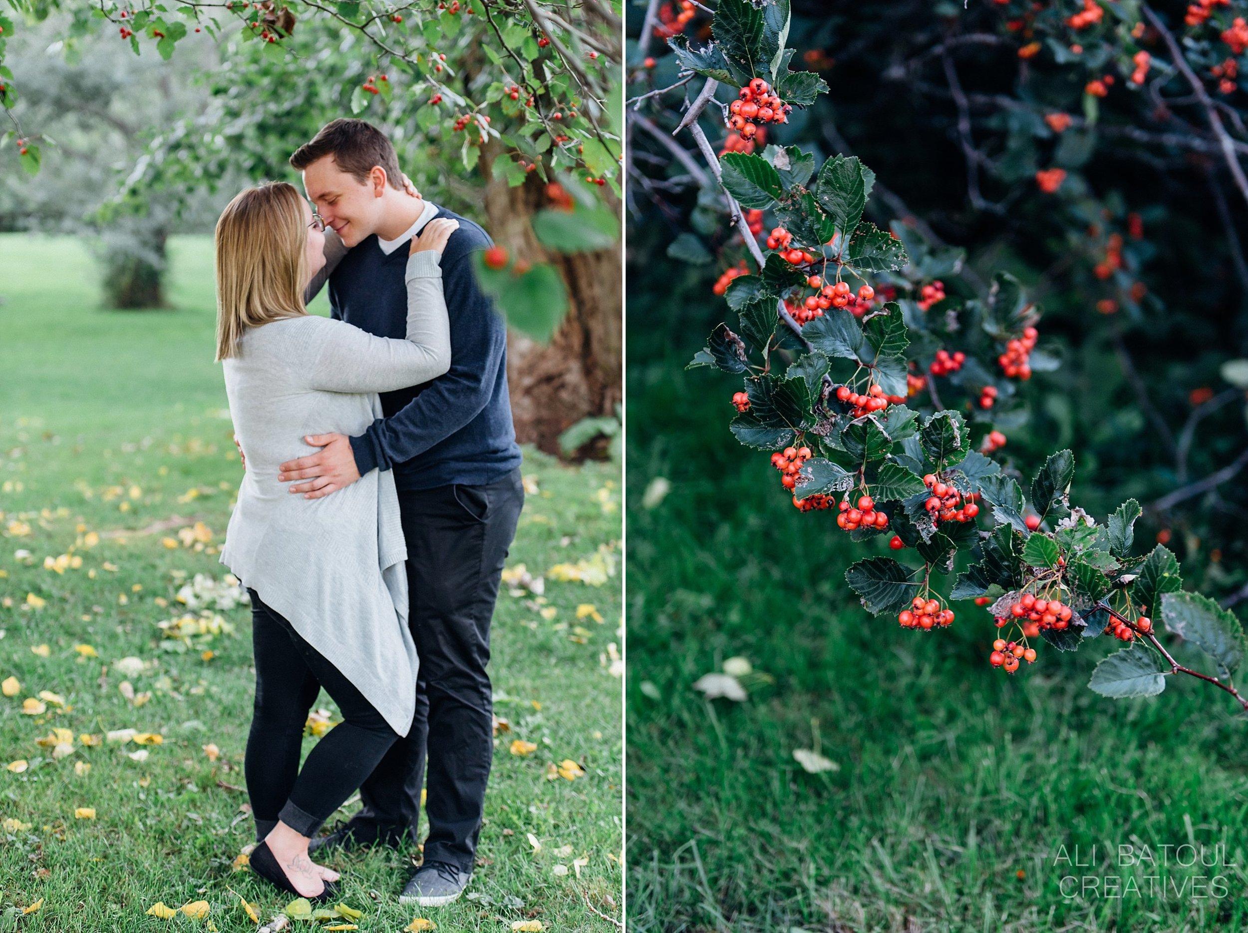 Natasha + Rich Ottawa Arboretum Engagement Photos - Ali and Batoul Fine Art Wedding Photography_0027.jpg