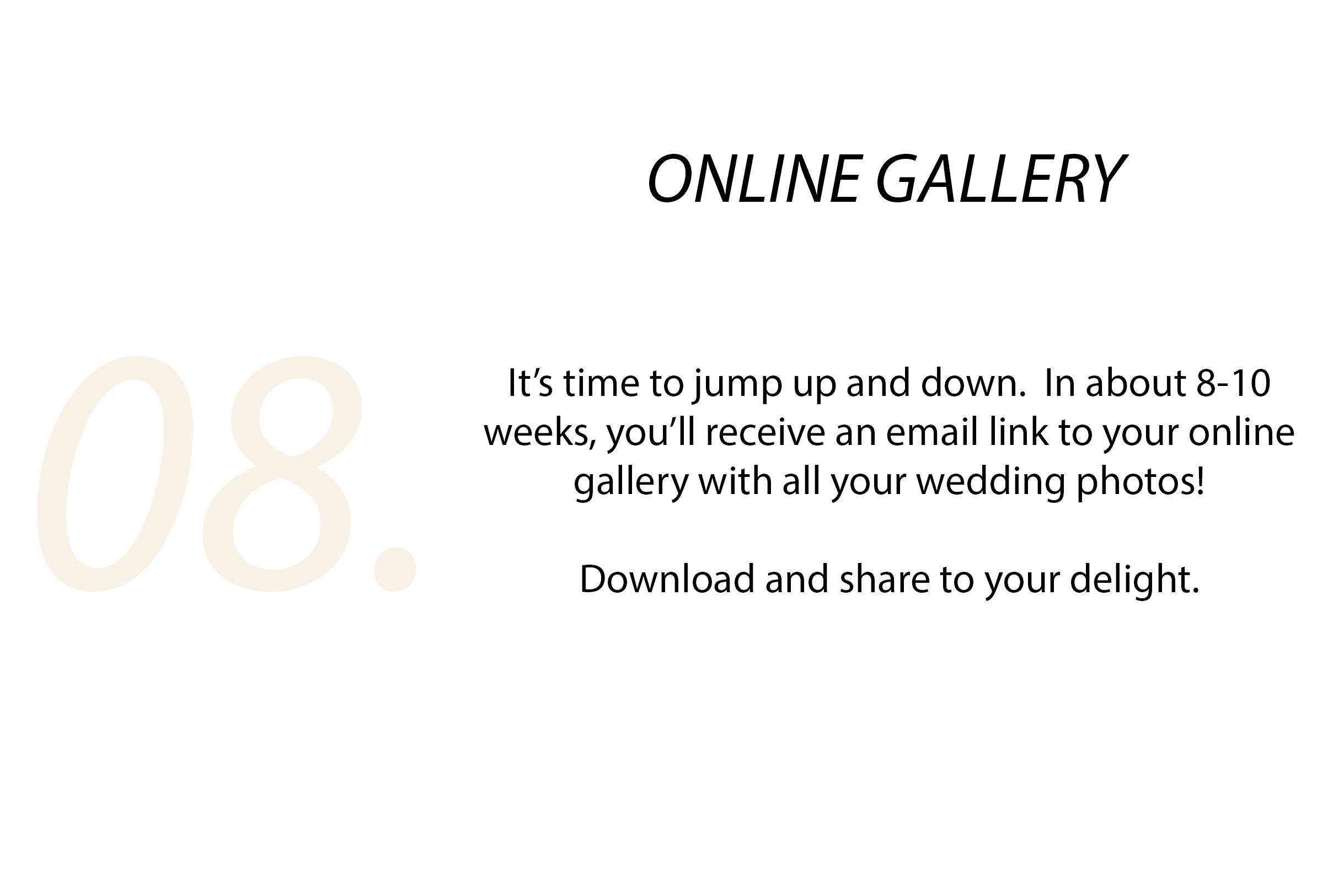 Step 8 - online gallery.jpg