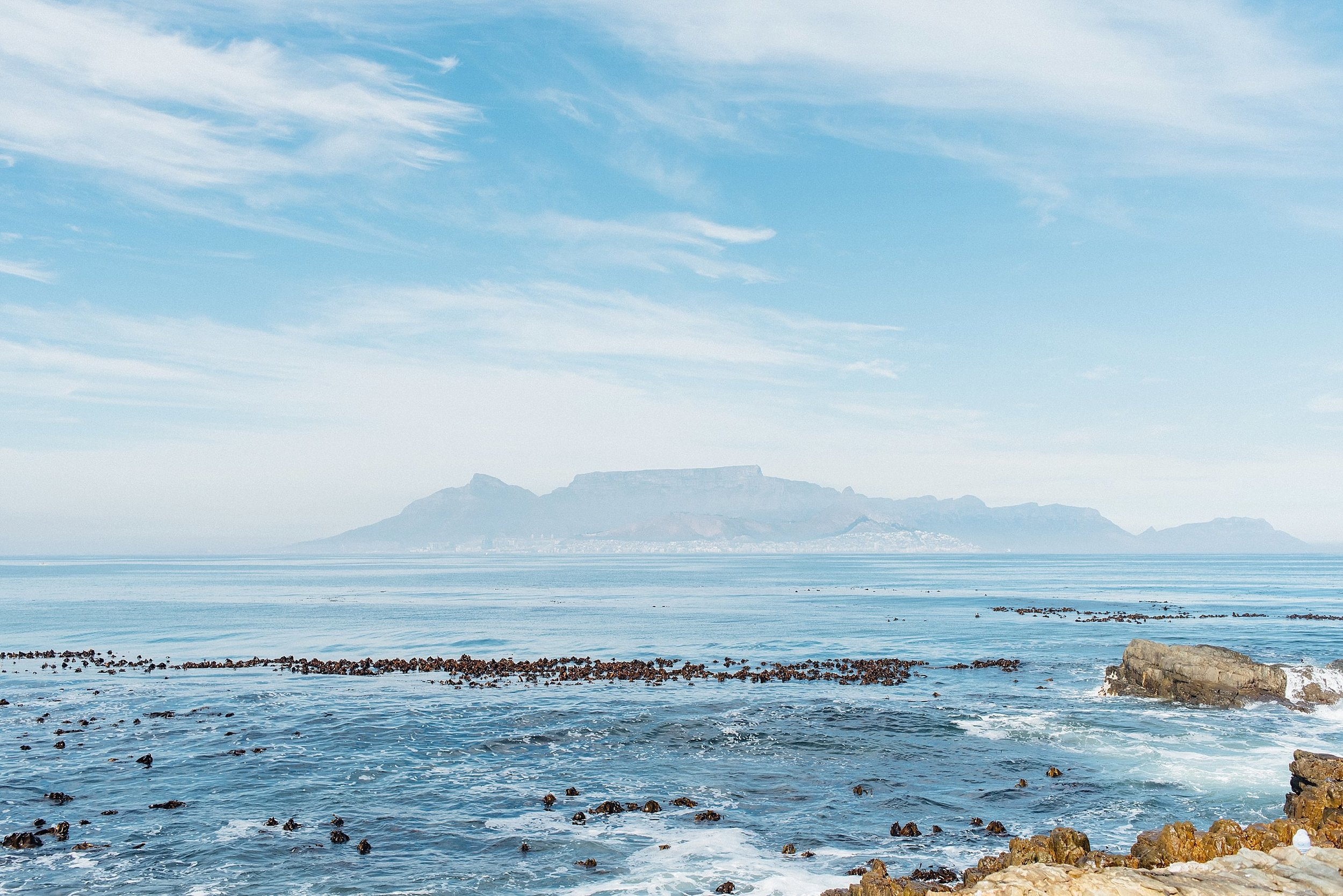 Cape Town, South Africa Travels Day 2 - BLOG - Ali and Batoul Photography-13.jpg