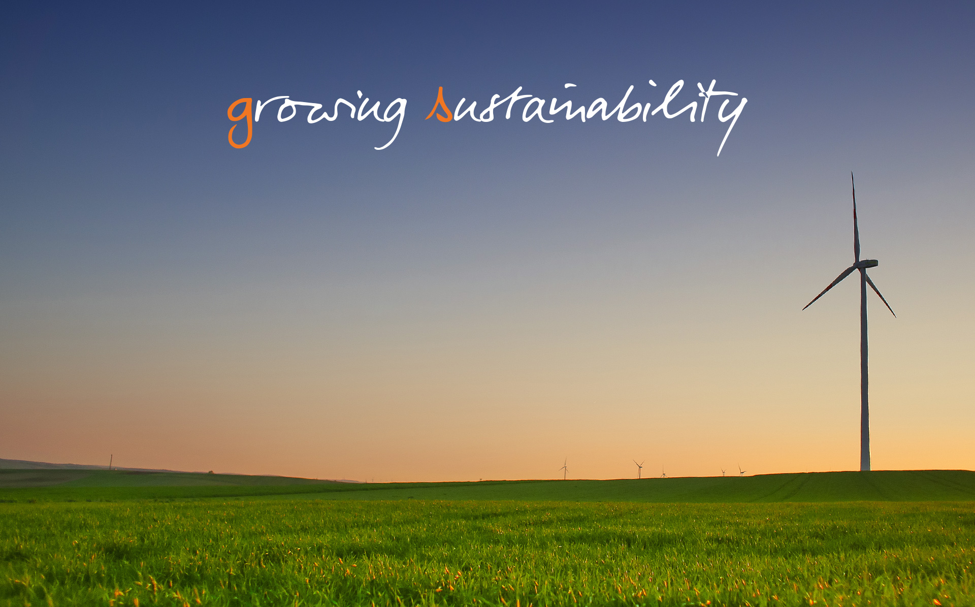 3-Growing-Sustainability-GS.jpg