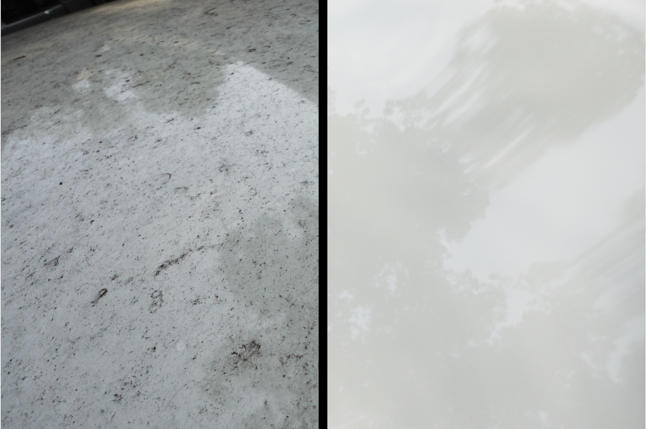 Charlottesville Car Wash and Detailing Audi Roof.jpg