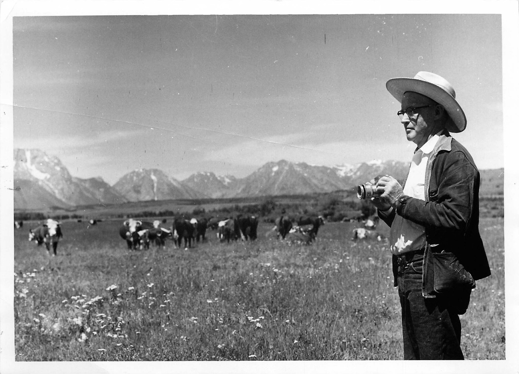 Bruce Porter photographing the cows on the summer range on Elk Ranch in Grand Teton National Park (around 1956).