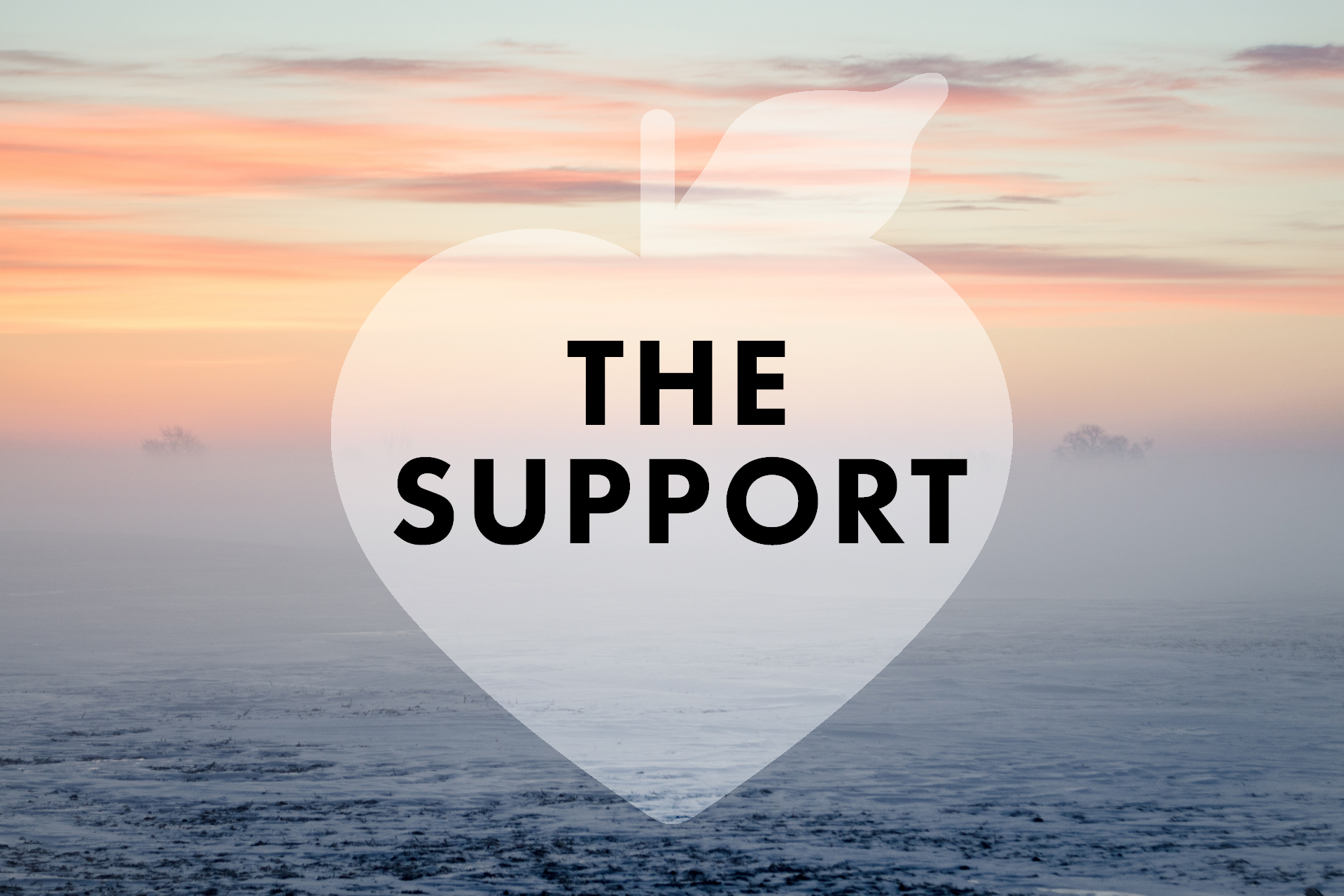 the_support