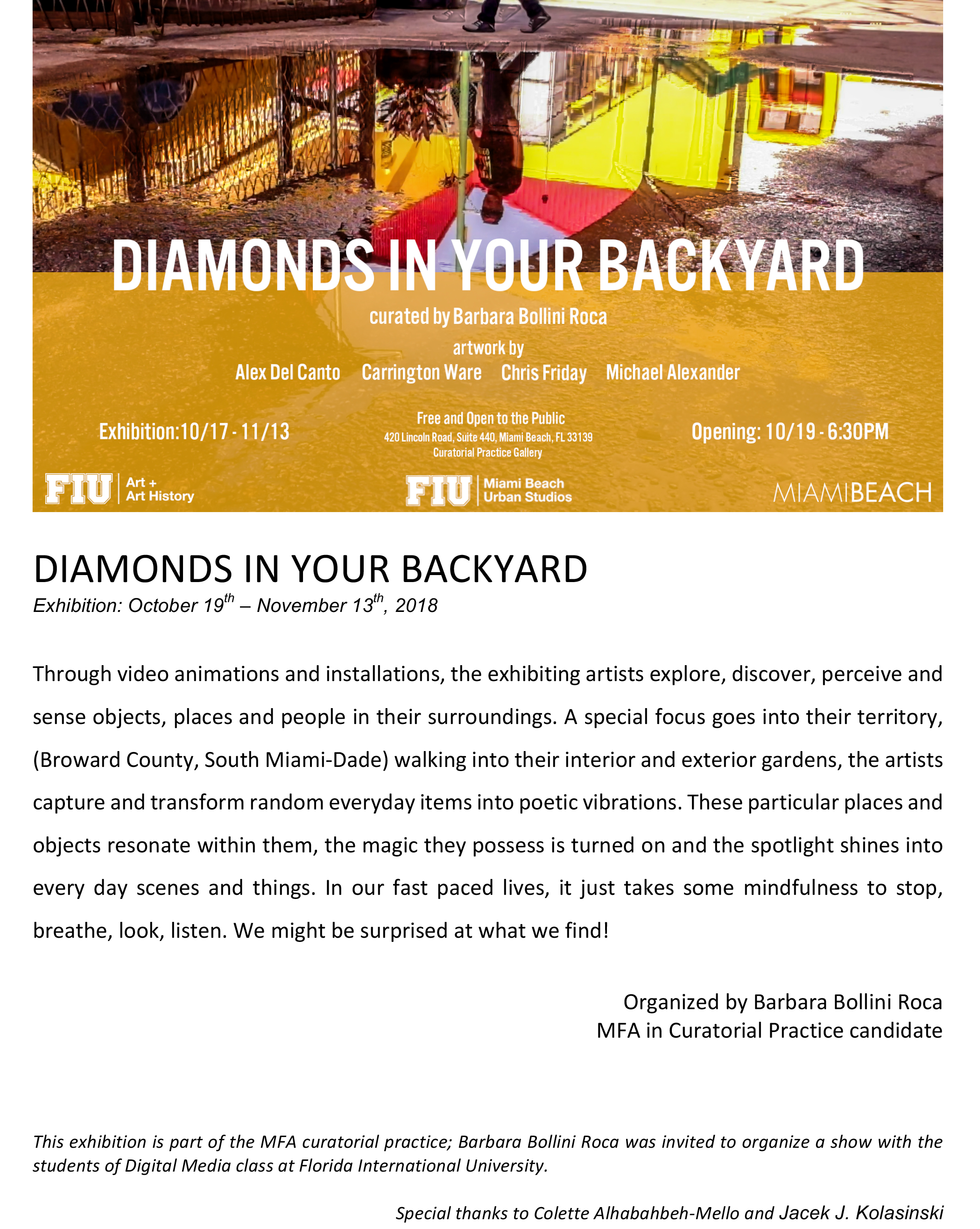 DIAMONDS IN YOUR BACKYARD_2_mail.jpg
